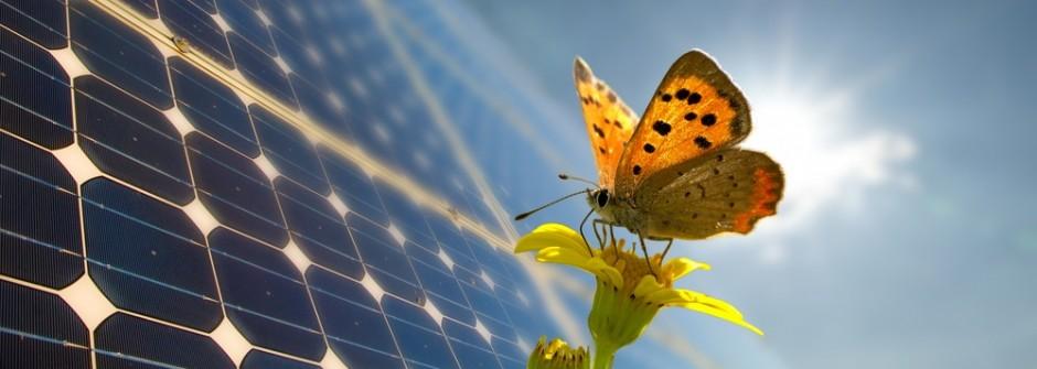 Solar Power For Dominica